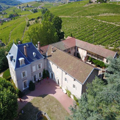 Vignoble à vendre beaujolais